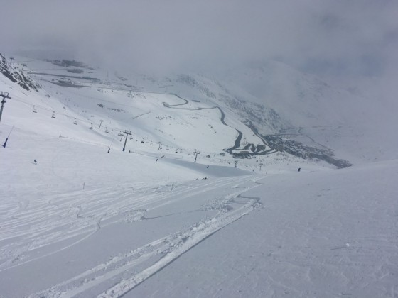 Fresh powder to the right of Directa red run