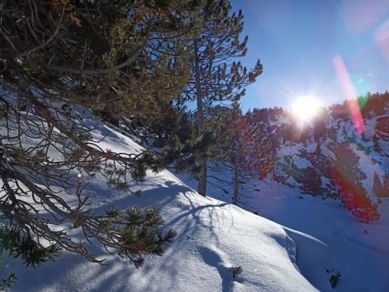 Powder day in Grau Roig