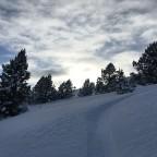 Making fresh tracks off piste in Grau Roig
